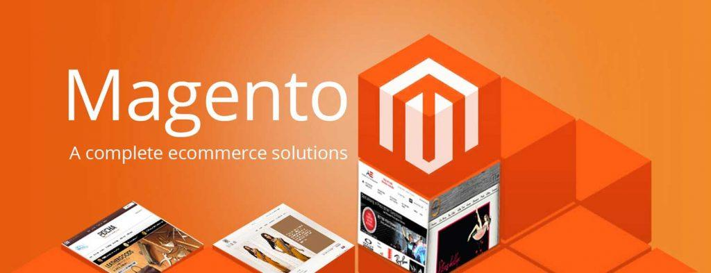 Hire Magento Ecommerce Developer at $10 Per Hour