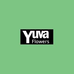 YuvaFlowers
