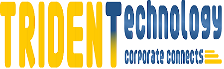 Trident Consultant - Best SAP training institute in Noida