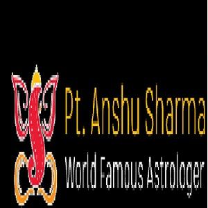 BestVashikaranAstro - Love Marriage Specialist