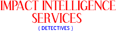 Impact Intelligence Services