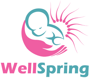 Wellspring IVF Hospital