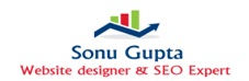 Sonu Prasad Gupta - Website Designer  SEO Expert in Delhi