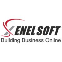 Xenelsoft Technologies - Digital Media Agency India